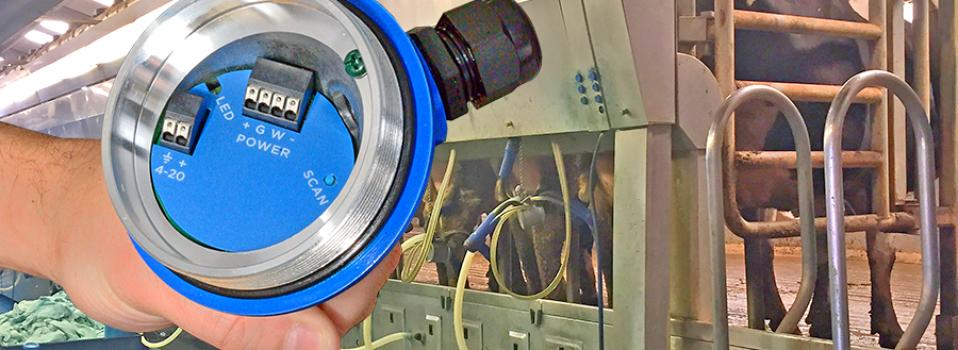 Dairy Chemical Batch Control Liquid Level Sensor